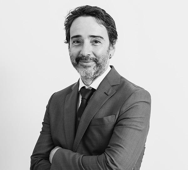 Octavio Cabrera, Lawyer and Tax Advisor